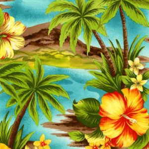 05-hawaiian